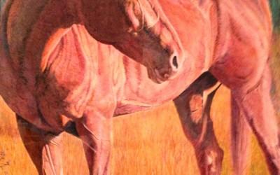 Gus of the CM Ranch (pencil) by Rich Boyd Art